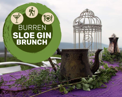Sloe Gin at the Burren Farm Experience